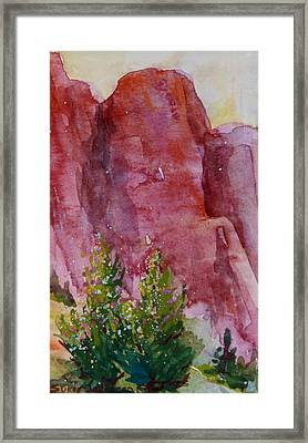 Red Rocks With Two Junipers Framed Print by Sukey Watson