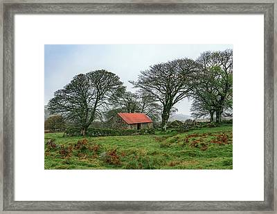 Red Roofed Barn Framed Print