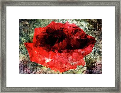 Red Rose Framed Print by Andrea Barbieri