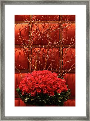 Red Rose Display Close Up Framed Print by Linda Phelps