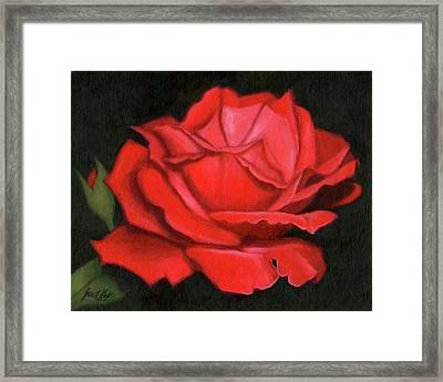 Red Rose Framed Print by Janet King