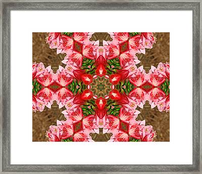 Framed Print featuring the photograph Red Rose Kaleidoscope by Bill Barber