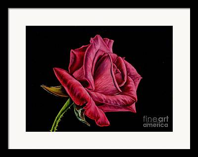 Romantic Drawings Framed Prints