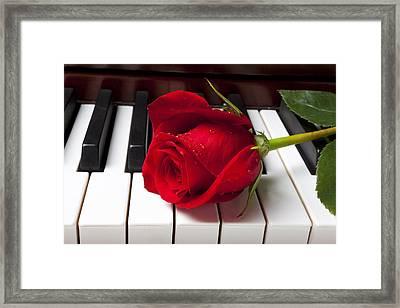Red Rose On Piano Keys Framed Print
