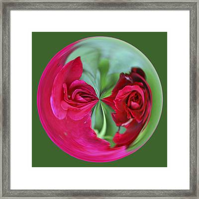 Framed Print featuring the photograph Red Rose Orb by Bill Barber