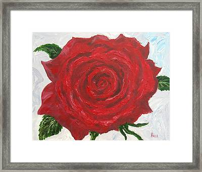 Red Rose Framed Print by Pete Maier