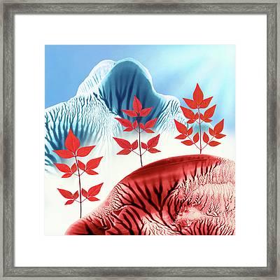 Red Rose Quarts Snd Sernity Blue Landscape Square Framed Print by Amy Vangsgard