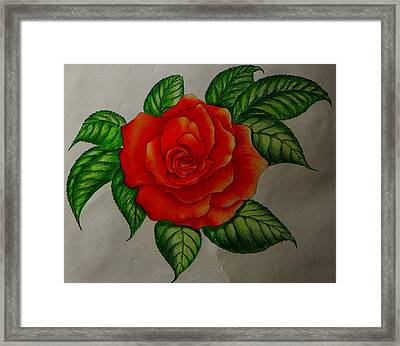 Red Rose Framed Print by Ron Sylvia