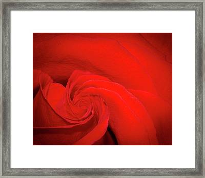 Red Rose Swirl Framed Print by Jean Noren
