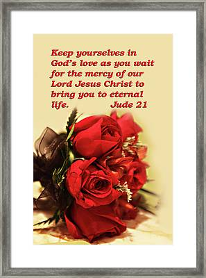 Red Roses Jude 21 Framed Print