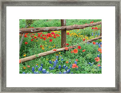 Red Rover Come Over Framed Print