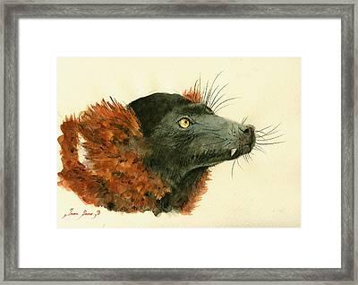 Red Ruffed Lemur Framed Print by Juan  Bosco