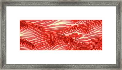 Red Sea Abstract Landscape Panoramic Framed Print