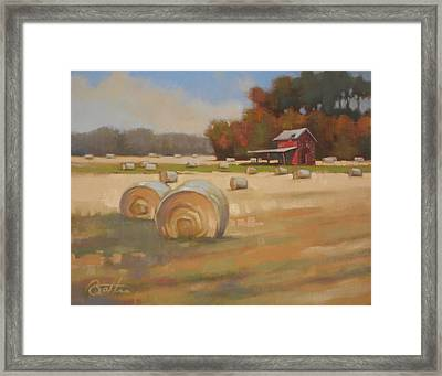 Red Shed Framed Print by Todd Baxter