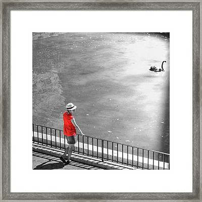 Red Shirt, Black Swanla Seu, Palma De Framed Print