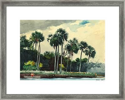 Red Shirt Homosassa Florida Framed Print by Winslow Homer
