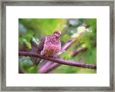 Framed Print featuring the digital art Red Shoes by Lois Bryan
