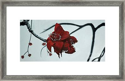 Red Silk Cotton Flower Framed Print