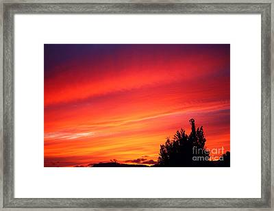Framed Print featuring the photograph Red Skies At Night  by Nick Gustafson