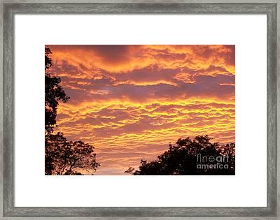 Red Sky Delight Framed Print by Marsha Heiken