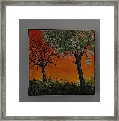 Red Sky Forest Framed Print by Martin Schmidt