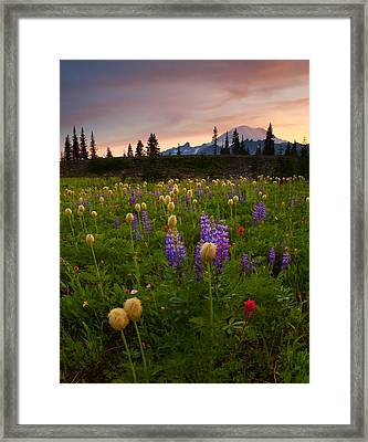 Red Sky Meadow Framed Print