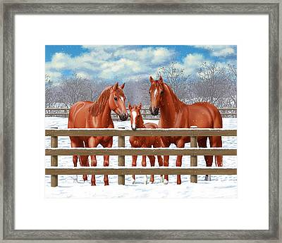 Red Sorrel Quarter Horses In Snow Framed Print by Crista Forest