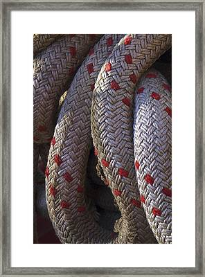 Red Speckled Rope Framed Print