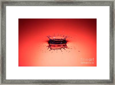 Red Splashdown Framed Print