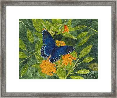 Red Spotted Purple Butterfly Batik Framed Print