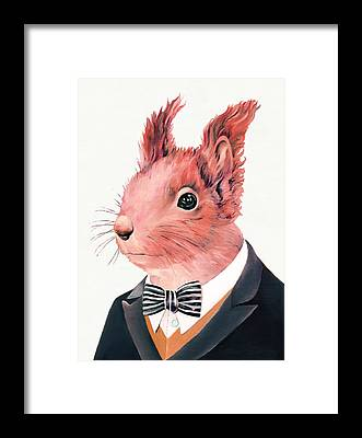 Squirrel Framed Prints