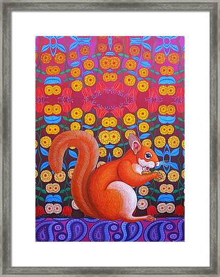 Red Squirrel Framed Print by Jane Tattersfield