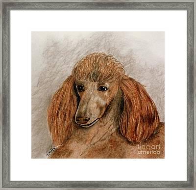 Red Standard Poodle Framed Print by Terri Mills