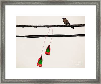 Red Stilettos With Bird Framed Print