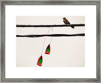 Red Stilettos With Bird Framed Print
