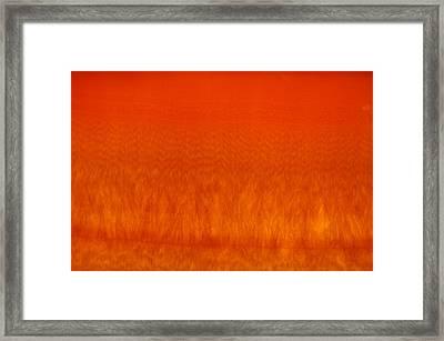 Red Stone 2 Framed Print