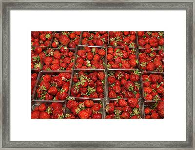Framed Print featuring the photograph Union Square Market Red Strawberries by Diane Lent