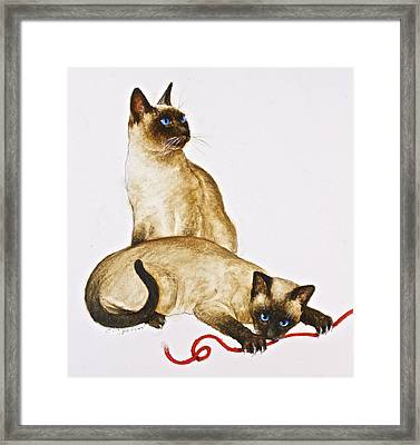 String Theroy  Framed Print