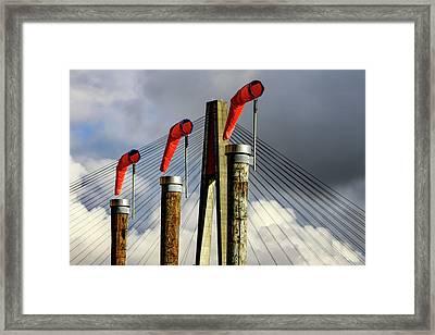 Red Subject Framed Print by Menachem Ganon