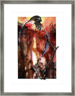 Red Tail Framed Print by Anthony Burks Sr