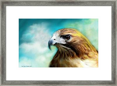 Red Tail Hawk  Framed Print by Crispin  Delgado