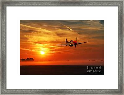 Red Tail Sunrise Framed Print