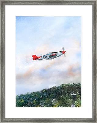 Red Tails Framed Print
