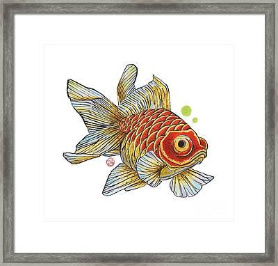 Red Telescope Goldfish Framed Print by Shih Chang Yang