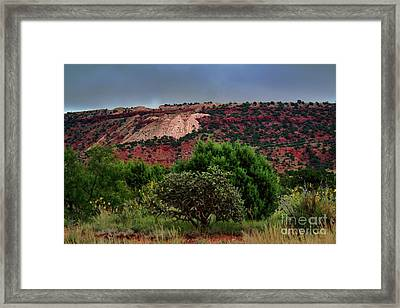 Framed Print featuring the photograph Red Terrain - New Mexico by Diana Mary Sharpton
