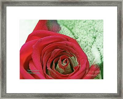 Red Framed Print by Terry Foster