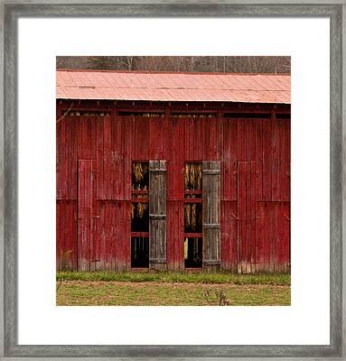 Red Tobacco Barn Framed Print by Douglas Barnett