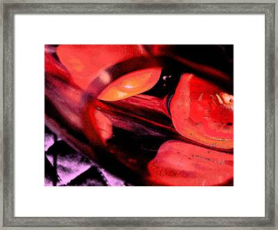 Red Tomatoe Two Framed Print