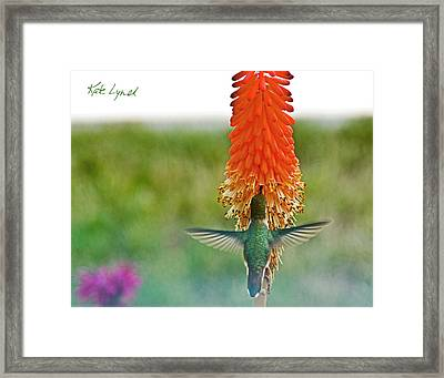 Red Torch II Framed Print