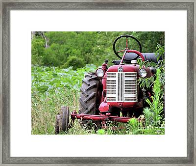 Red Tractor  Framed Print by Janice Drew